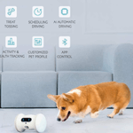 Best Pet Fitness Robot 2020